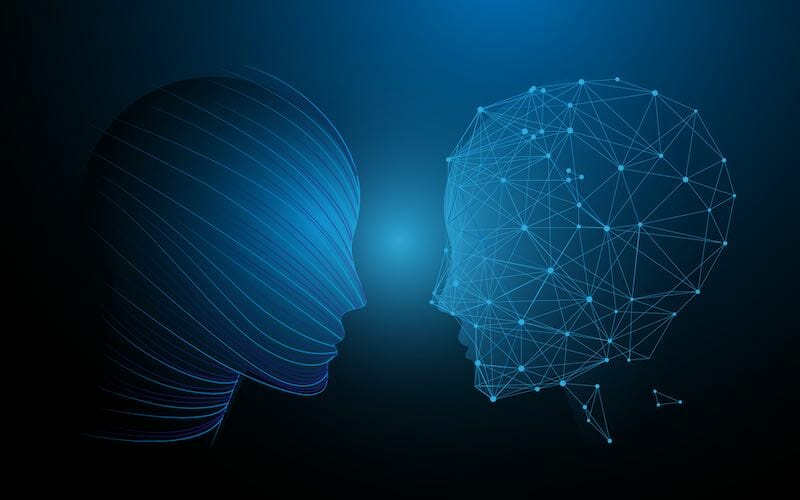 Human Heads And Brain Functions Concept, Analytically Vs Creativity. Illustration Vector